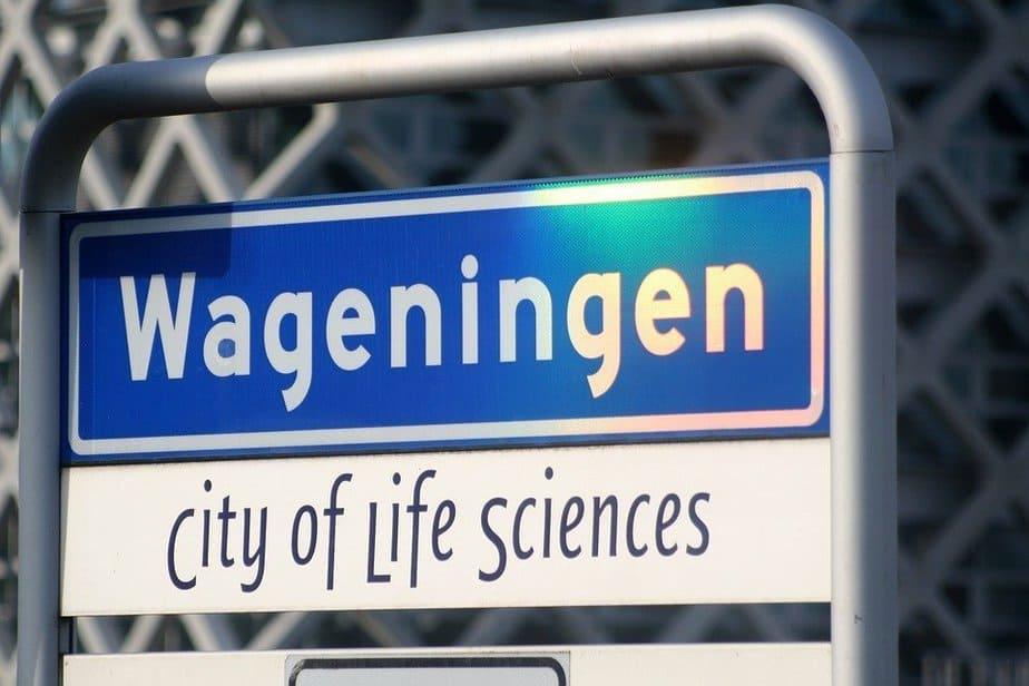 RTV Rijnstreek en bblthk haken in op discussie over bereikbaarheid